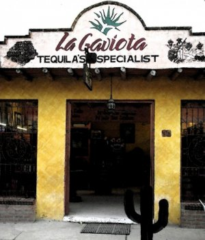 The Tequila House - La Gaviota